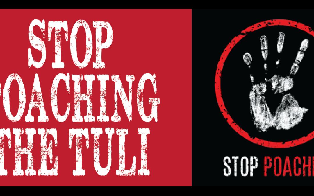 Giants Adventure Rally | Stop Poaching The Tuli